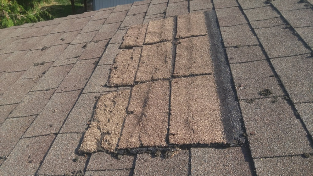 Roof Damage Public Adjuster