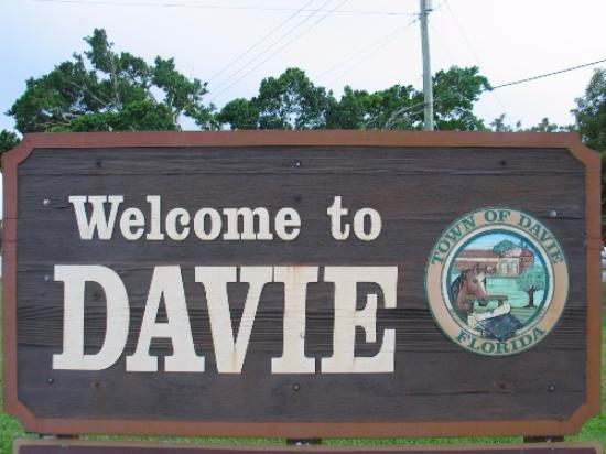 Public Adjuster Davie