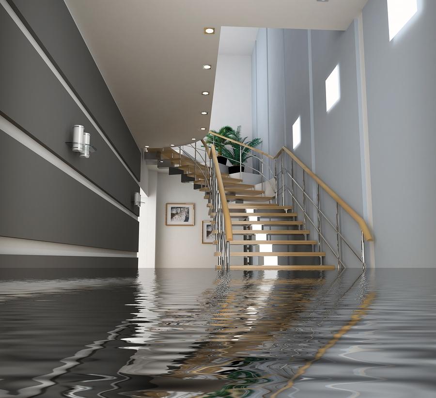 Palm Beach Water Damage